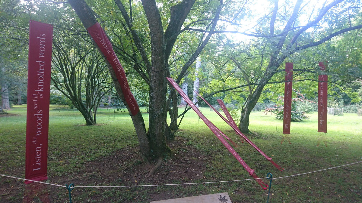 Photo showing the poem 'Hear This' installed in a group of four wingnut trees.