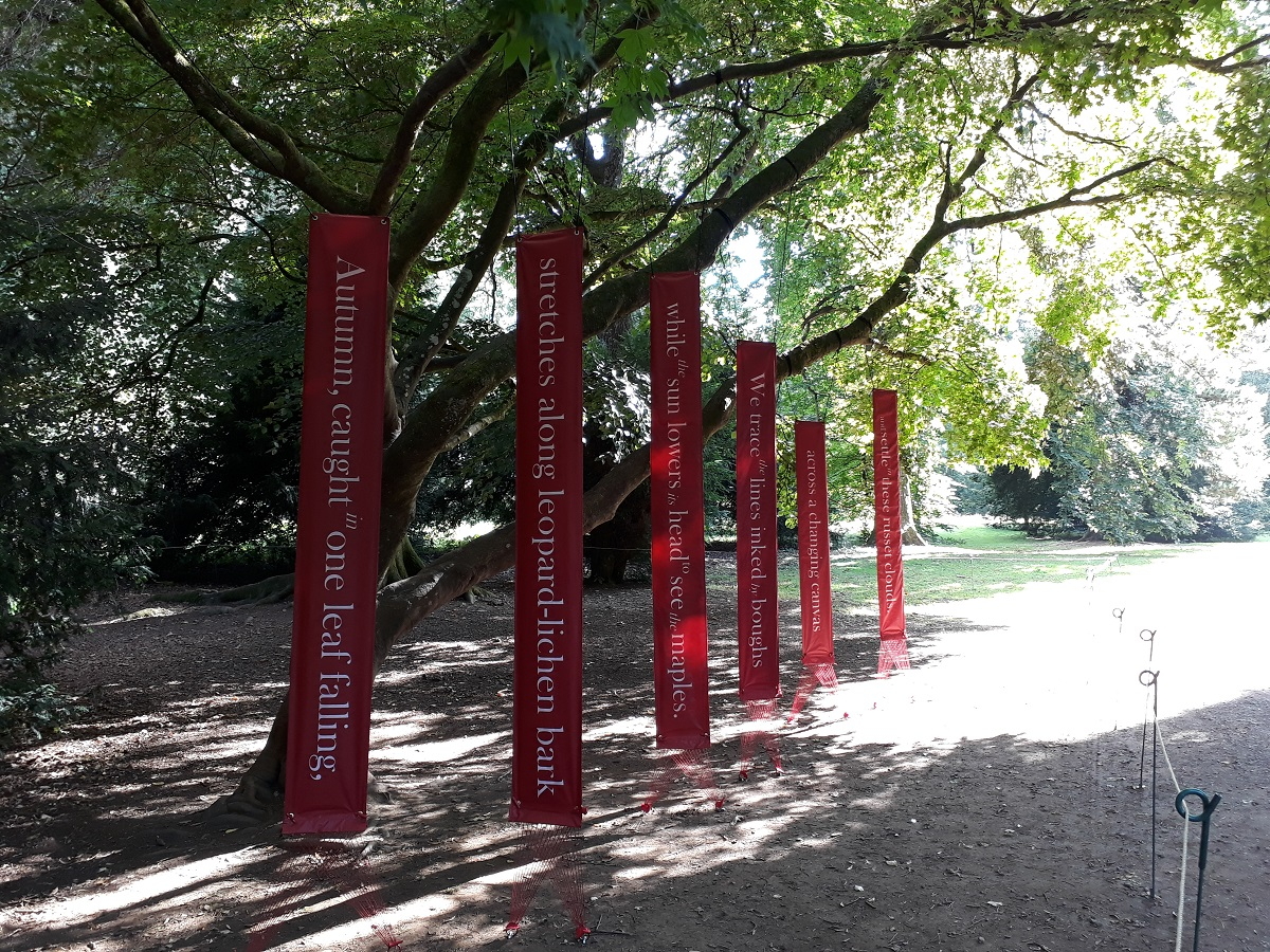 Photo showing the poem 'September Slows' displayed in a Japanese maple. The six banners hang vertically from the boughs.