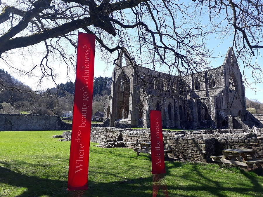 "Photograph showing Marchant's poetry lines ""Where does beauty go in the darkness? Ask the moon"" installed in an oak tree in the grounds of Tintern Abbey"
